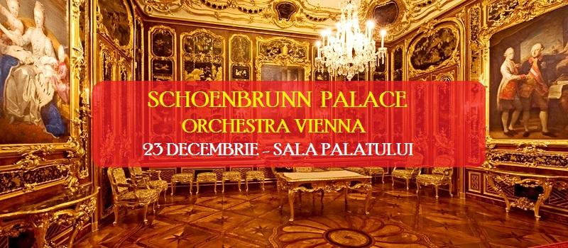 Reguli de acces pentru concertul orchestrei vieneze